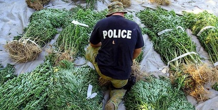 4 Surprising Reasons Cops Want Marijuana to be Legalized