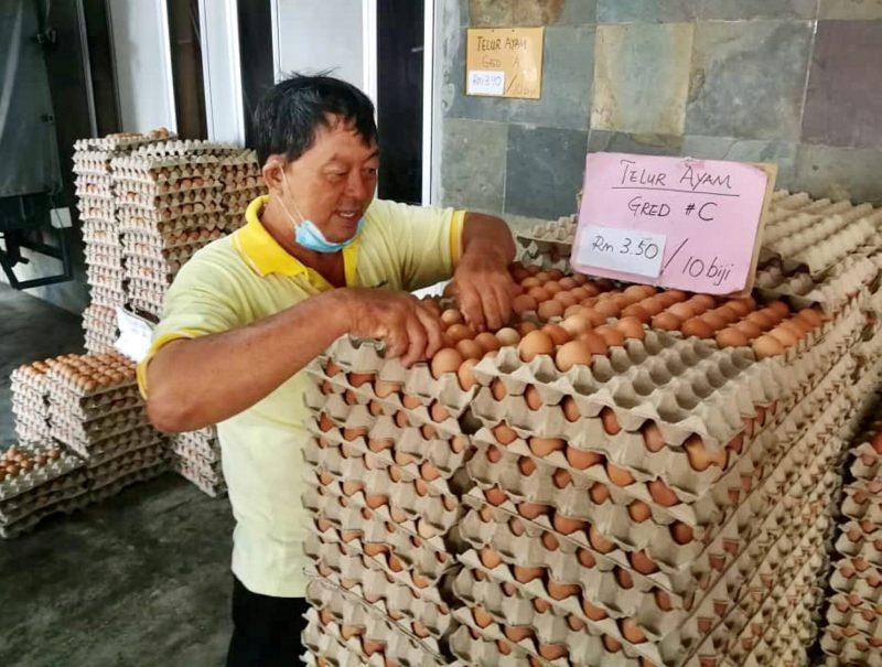 Harga telur ayam dan itik melambung
