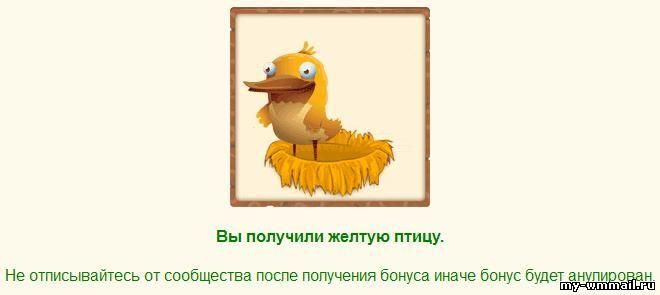 cum să faci bani cu păsări bogate Comercianții cu opțiuni binare conversează prin chat