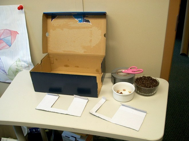 PHOTO: The components for this activity are displayed.
