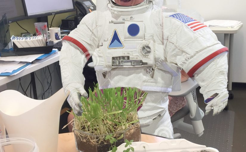 Growing Plants in Martian Soil