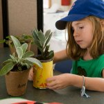 PHOTO: a young girl decorates plant pots to give as teacher gifts.