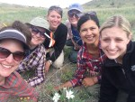 Krissa Skogen studying hawkmoth pollination with Tania Jogesh, Andrea Gruver, Emily Lewis, Kat Andrews, and Victoria Luizzi.