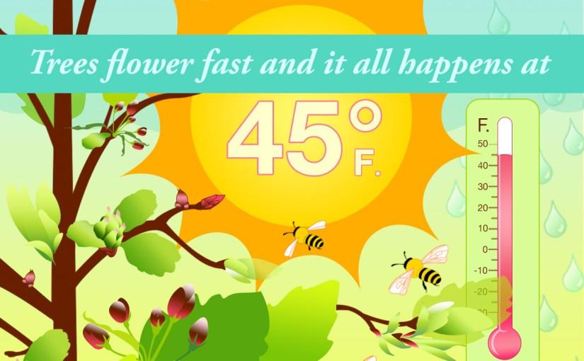 Ready, Set, Spring!