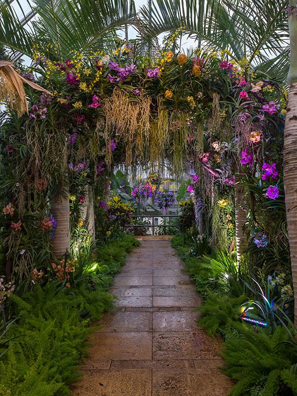 The Orchid Show displays in the Tropical Greenhouse.