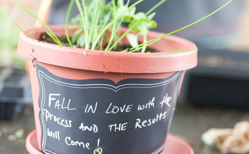 """PHOTO: Pot labeled with chalkboard paint reads, """"Fall in love with the process and the results will come."""""""
