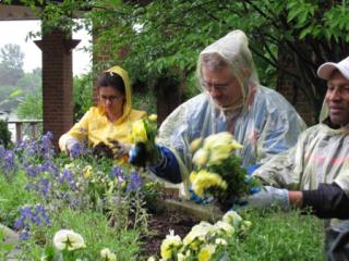 PHOTO: Veterans planting in the rain.