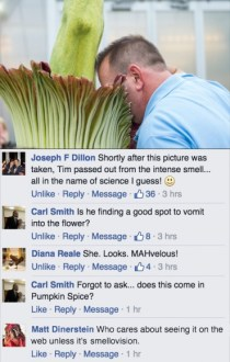 PHOTO: Our Facebook comments were just as much fun as the greenhouse.