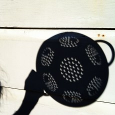 Crescent-shaped shadows of an eclipse seen through a colander.