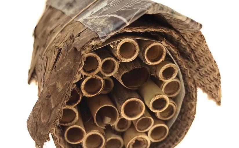 Build a DIY Native Bee Home