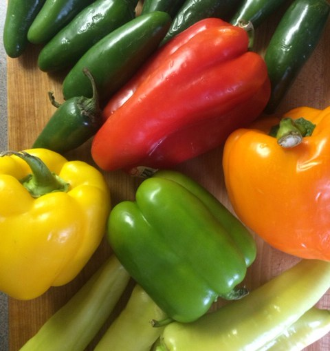 PHOTO: Peppers in all shapes, flavors, and colors.