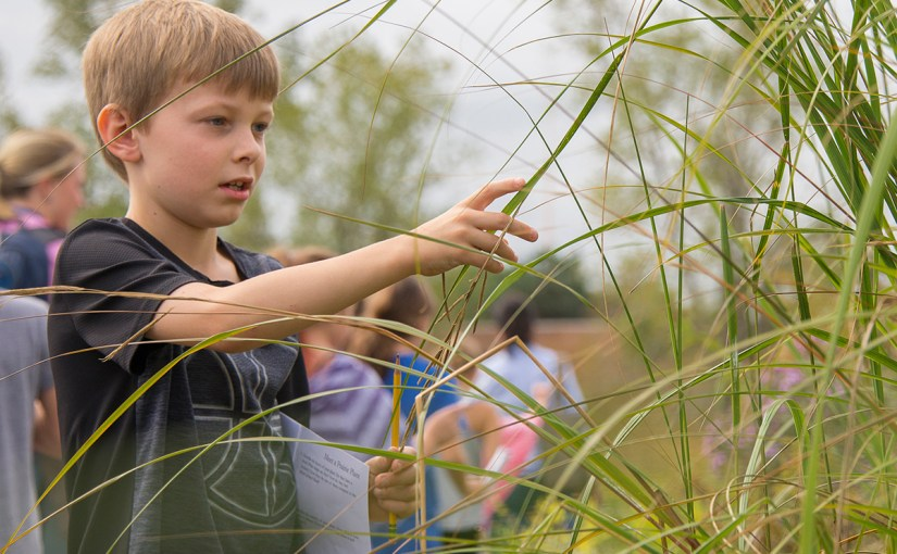 Kids become ecologists on Ms. Frizzle-worthy Garden field trips