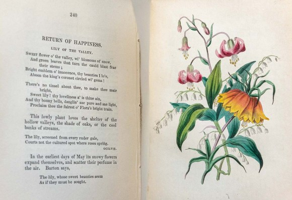 Poem and illustration from Madame de la Tour's Langage des Fleurs