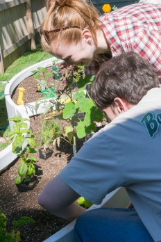 Installing an edible garden with a client from Rimland non-for-profit organization