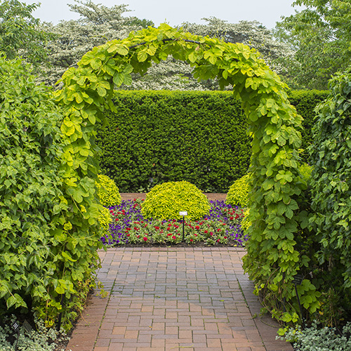 PHOTO: Arch at Circle Garden side garden.