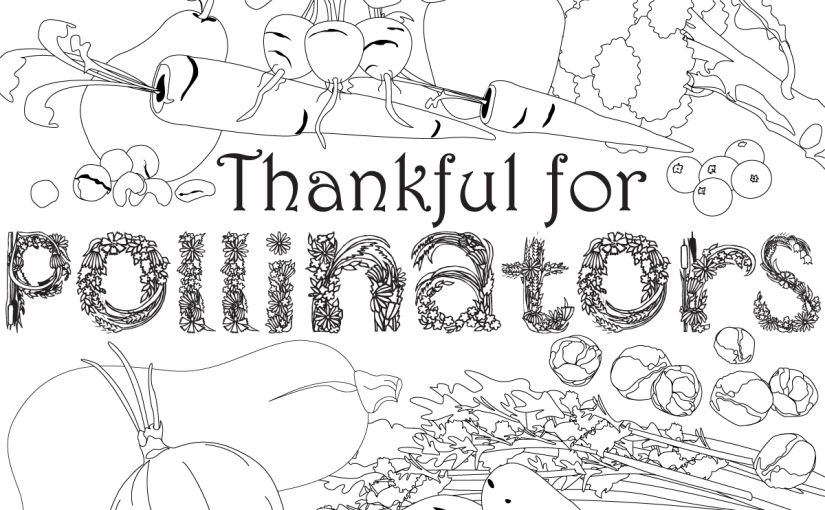 Give thanks for pollinators on Thanksgiving