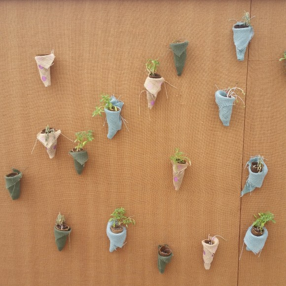 PHOTO: sixteen cone-shaped pockets containing small plants are displayed on the brown walls.