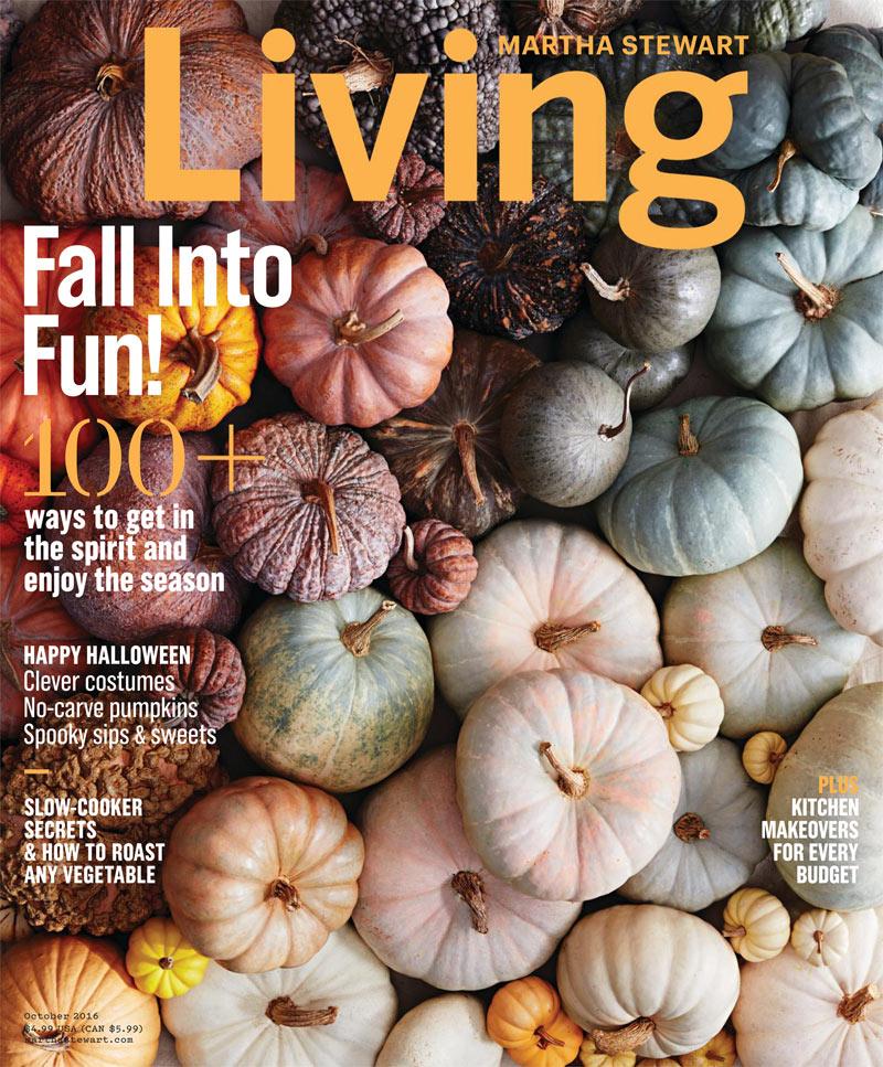 Martha Stewart Magazine 6
