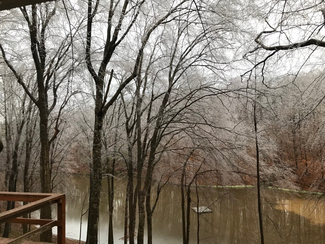 Ice Storm - Trees and Limbs falling all around us! 4