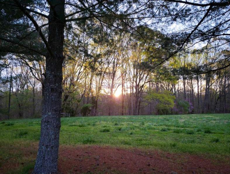 Moring Sunrise