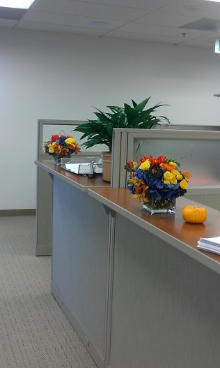 Flowers on cubicle walls
