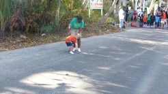Hopetown Turtle Trot 2012_00129