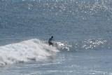 Garbanzos_Surf_11-24-13_06