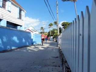 Turtle_Trot_Hopetown_Abaco_2015_20151126_0356