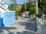 Turtle_Trot_Hopetown_Abaco_2015_20151126_0365