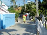 Turtle_Trot_Hopetown_Abaco_2015_20151126_0366