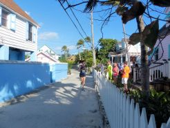 Turtle_Trot_Hopetown_Abaco_2015_20151126_0382