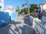 Turtle_Trot_Hopetown_Abaco_2015_20151126_0389