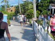 Turtle_Trot_Hopetown_Abaco_2015_20151126_0418