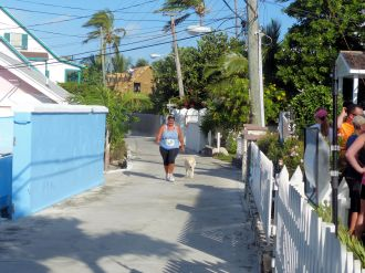Turtle_Trot_Hopetown_Abaco_2015_20151126_0428