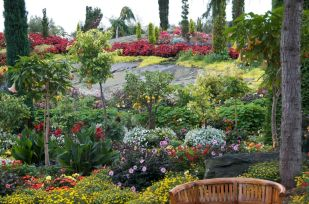 Large slabs of rock set off the beautiful plantings
