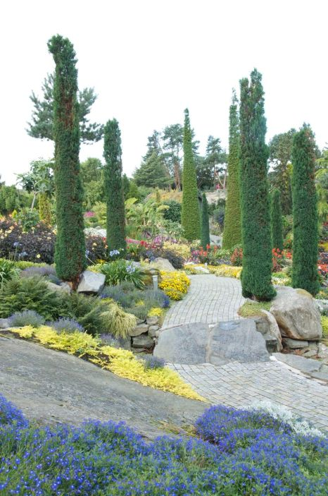 Trees add structure throughout the garden