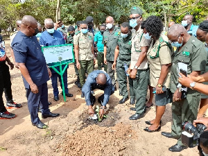 'Green Ghana Project', Akufo-Addo ,others to join in planting 5 million trees today