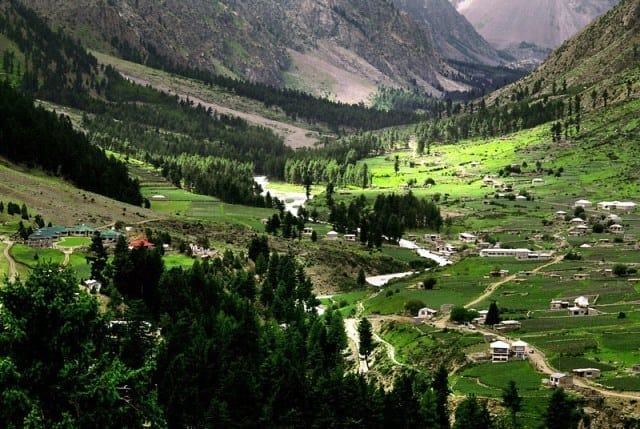 naltar valley in summer