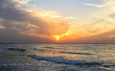 Twenty Things To Do In Tel Aviv That Will Make You Fall In Love With It