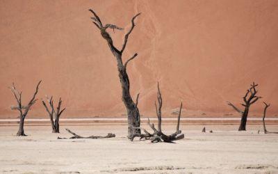 35 Simply Unmissable Things To Do In Namibia