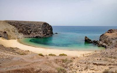 Which Are The Best Canary Islands?