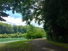 Lush views during our entire walk