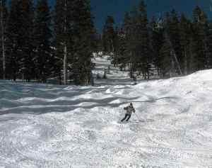 Skiing the moguls at Taos Ski Valley.