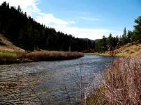 The South Platte River near Deckers, Colorado