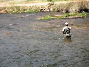 Fly fishing in the waters of the North Platte River near Deckers, Colorado.