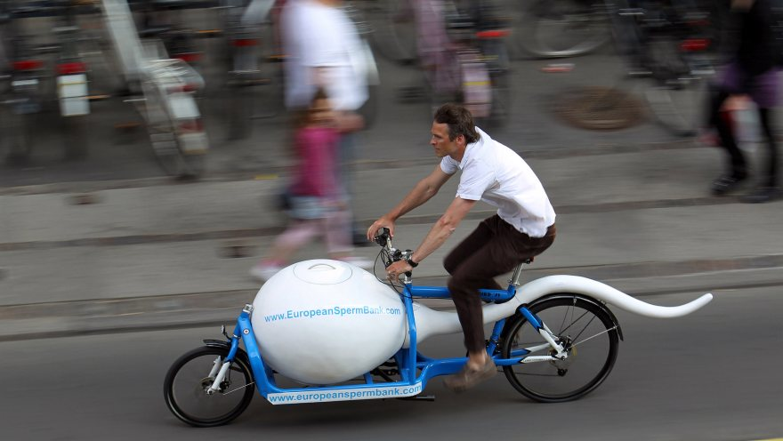 Cargo bike business