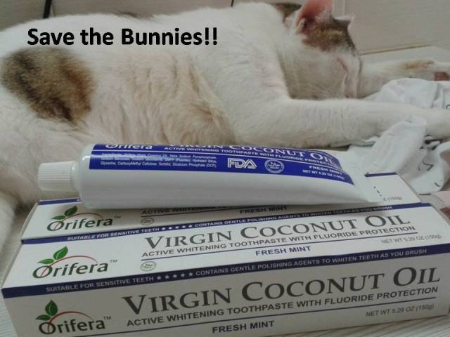 save-the-bunny-bun-buns