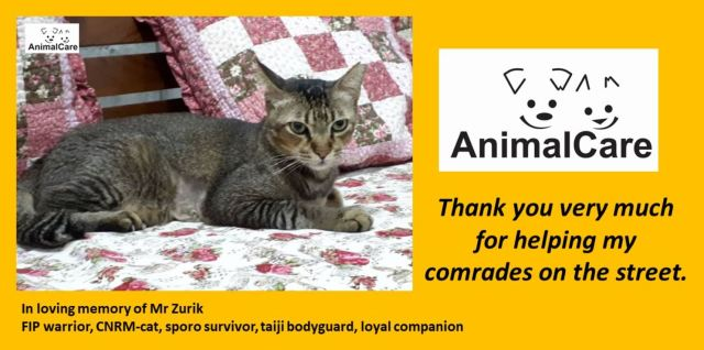 Thank You Very Much (August 2019 Donors)