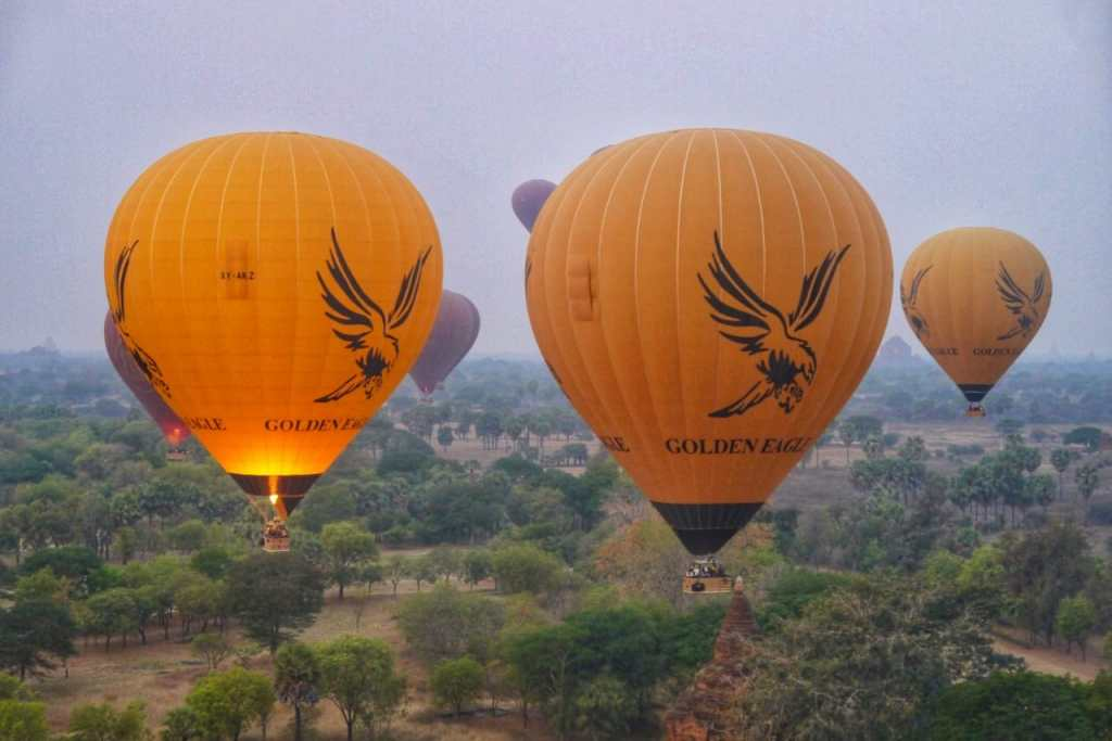 Golden Eagle Bagan