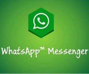 WhatsApp Messenger Apk free on Android